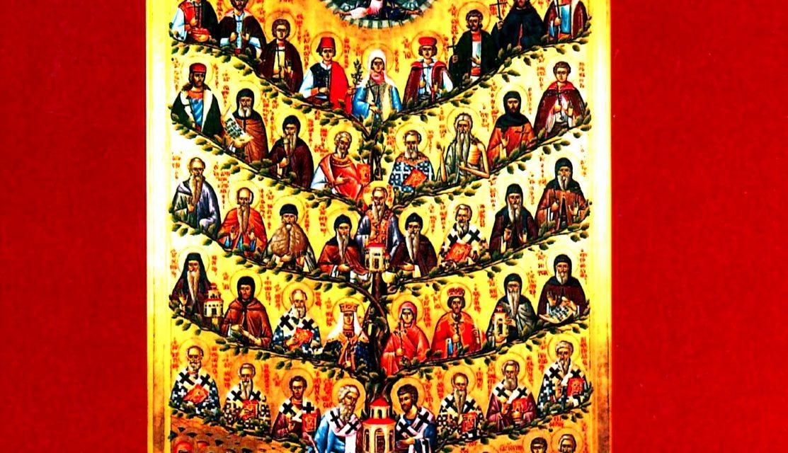 Jeta e shenjtorëve në Kishën Ortodokse
